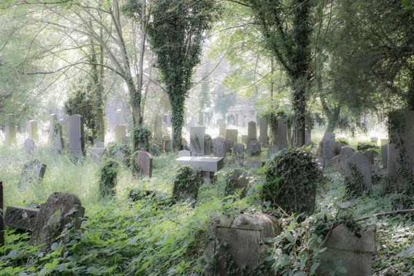 Um diesem negativen Image entgegenzuwirken und die Attraktivität des Friedhofs zu steigern, beschloss der Gemeinderat 1881 die Errichtung einer Ehrengräberanlage.