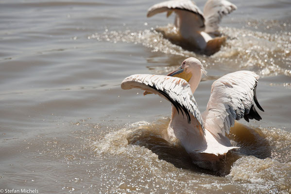 Der Ziway-See, einer der Seen im Ostafrikanischen Grabenbruch.