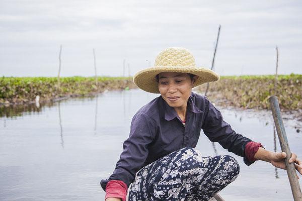 ウォーターヒヤシンス収穫へ #Pavanasara #Water hyacinth bag