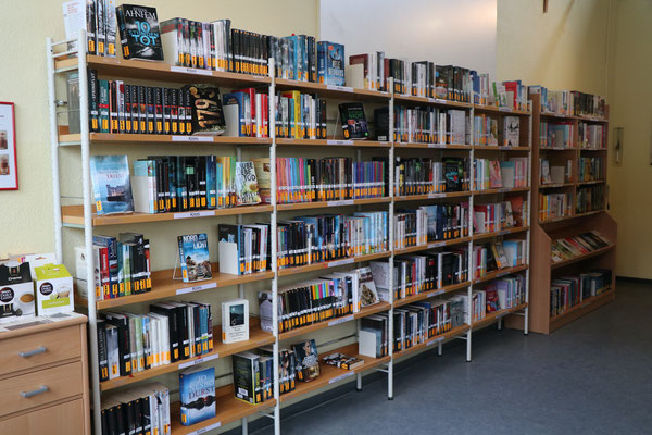 Romane (sortiert nach Themen)