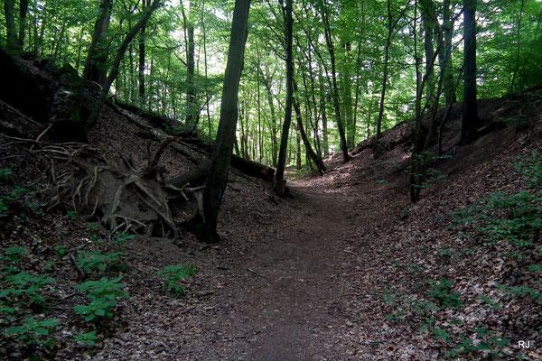 Zugang Brennender Berg Dudweiler