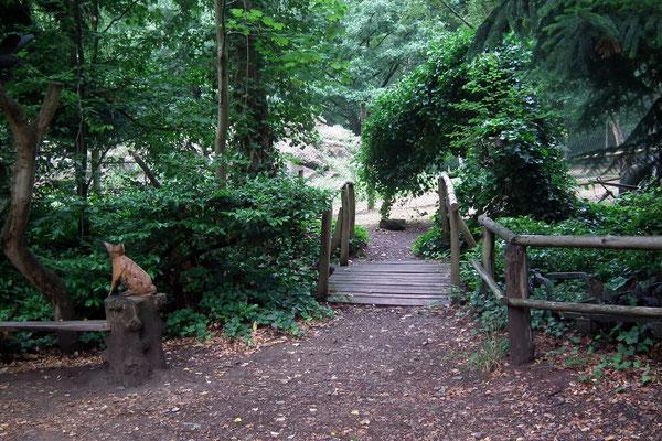 wildpark saarbruecken,