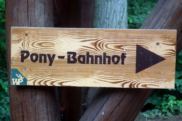 wildpark saarbruecken, pony-bahnhof