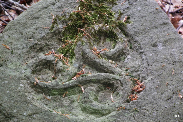 Ornament auf dem Stein am Wegesrand, Gehlenberg Dudweiler