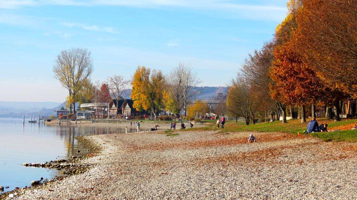 Herbst Strandbad Sipplingen