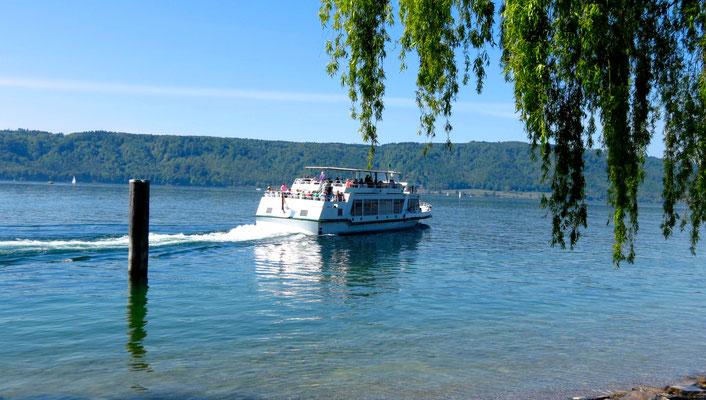 Bodensee Fähre in Frühling
