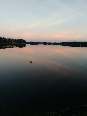 Coucher de solel sur les étangs de la Brenne (36)