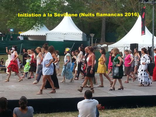 Initiation à la sévillane (Nuits Flamencas 2016)