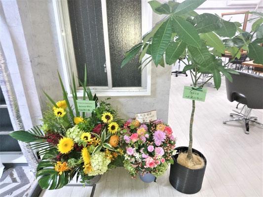 愛知県名古屋市 新規開業店舗の美容室が完成