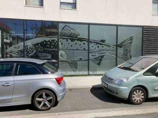 dessin en adhésif dépoli sur vitrine