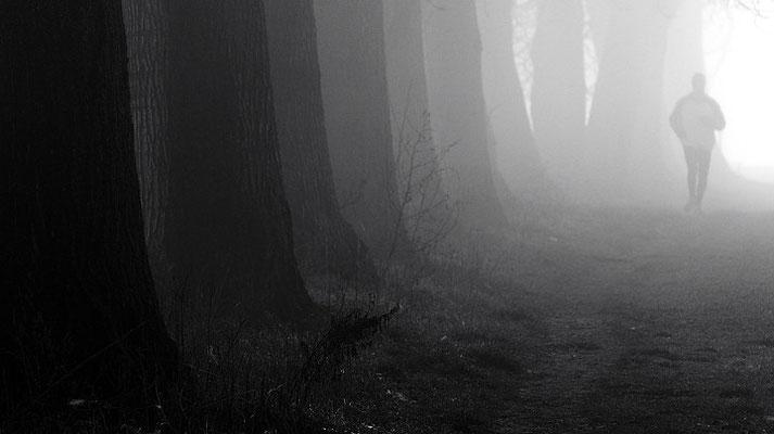 Joggin nella nebbia al Ticinello
