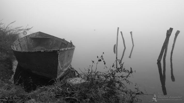 Barca nella nebbia ( Trezzo d'Adda, 1 Gennaio 2016)