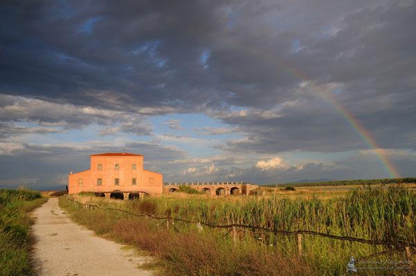 Arcobaleno sopa casa Ximenes (Diaccia Botrona, Castiglione della Pescaia)