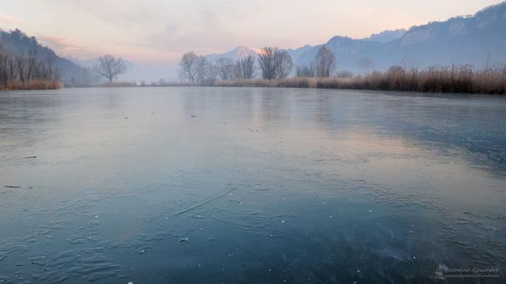 Alba ghiacciata (Brivio, Gennaio 2015)