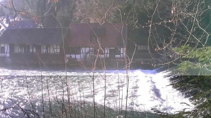Blautopf in Blaubeuren am 06. Feb. 2020 Pegelstand 60 cm Schüttung 9450 Liter/sec