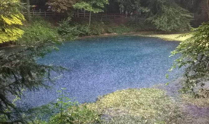 Blautopf Hammerschmiede Blaubeuren 1.Sep.2019 Pegelstand 4 cm Schüttung 1211 l/sec bei Regen