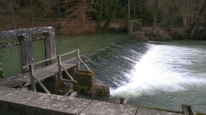 Blautopf Blaubeuren endlich wieder viel Wasser 03. März 2019