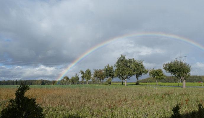 Regenbogen über Machtolsheimer Strasse Oktober 2020