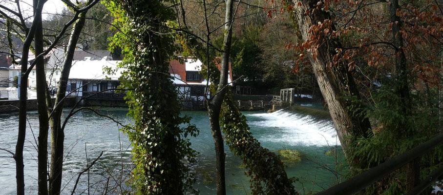 Blautopf in Blaubeuren am 29. Jan. 2021 Schüttung 5110 Liter/sec