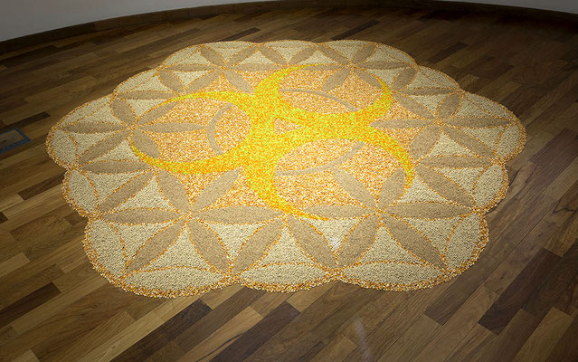 Untitled, 2017. Rice, soya beans and corn. 4m diameter