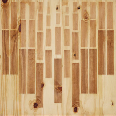 Serie Woods- Wood 2, 2009. Acrylic on wood. 55x 55cm