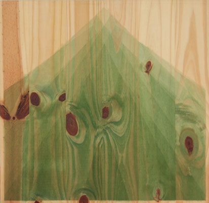 Serie Woods- Mountain, 2010. Acrylic on wood. 55x 55cm