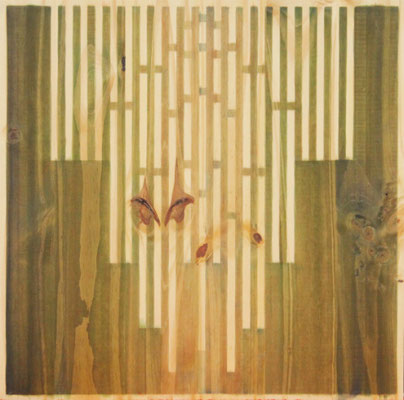 Serie Woods-Growth, 2009. Acrylic on wood. 55x 55cm