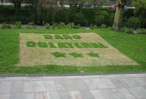 Collateral Damage, 2005. Intervention in the grass. 5 x 5m