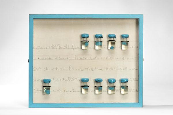 Anja Schindler, FORSCHERKASTEN_AEGYPTIUS VIII, Sammlerkasten, Graphit, Glas, Siegellack, Öl, Früchte der Sykomore, Acryl, 51 x 42 cm