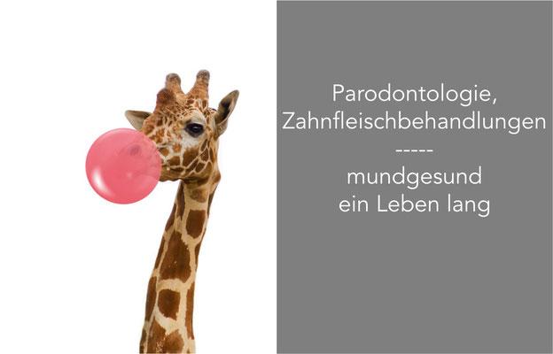 Zahnfleischbehandlung Zahnfleischentzündung Zahnfleischrückgang Parodontose St. Leon-Rot