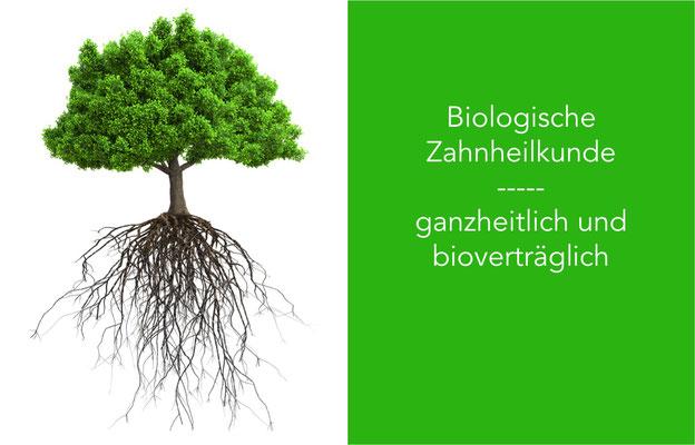 Biologische Zahnmedizin ganzheitlicher Zahnarzt Umweltzahnmedizin St. Leon-Rot