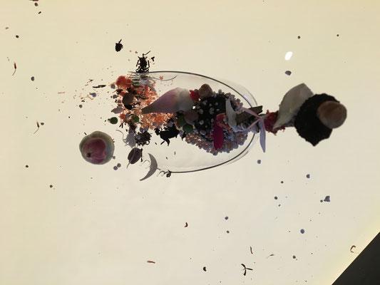 Experimente mit Christian Grünwald