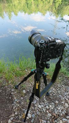 Nikon D7500 + Tamron 18-270mm