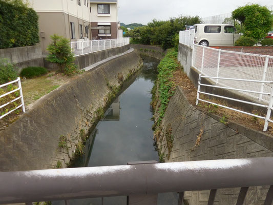 南高橋から上流。西長戸町、みどり小東側。