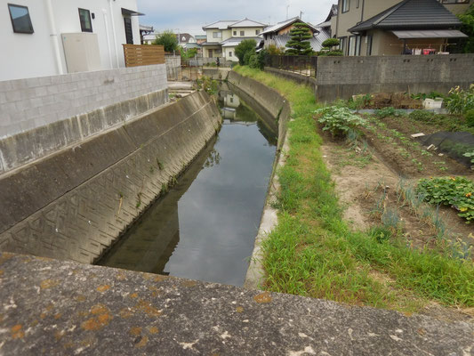 北高橋から上流。JA久枝支所西側。