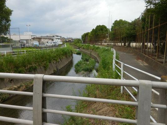 久枝橋から上流。右側に久枝小グランド。