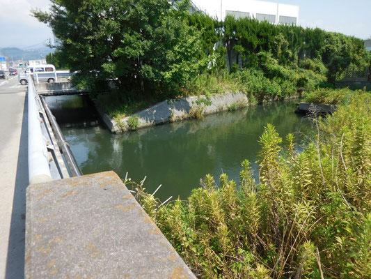 新川と合流。
