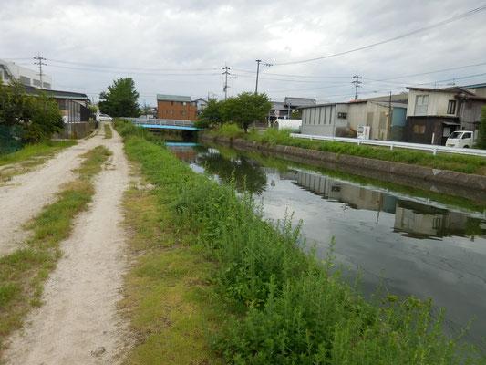 県道松山東部環状線の久万川橋。