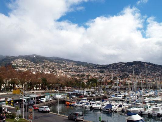 Blick auf Funchal und die Berge - vom Hafen aus