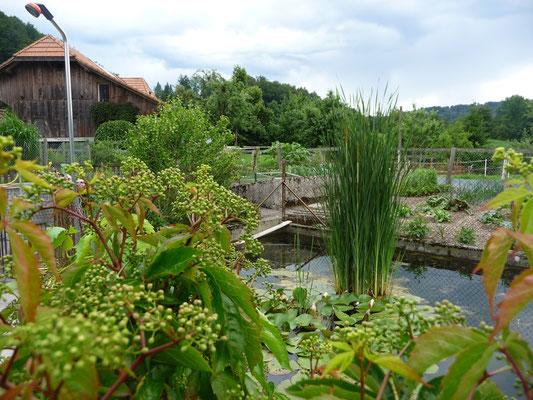 Impressionen vom Jordi-Hof - Jordi-Hof Bewirtung und Übernachtung auf dem Bauernhof in Ochlenberg