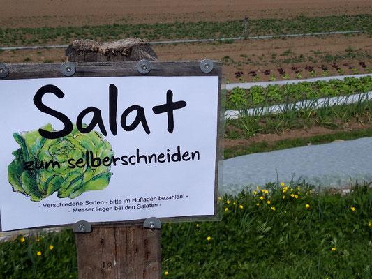 Salat zum selberschneiden - Muttertag 2021