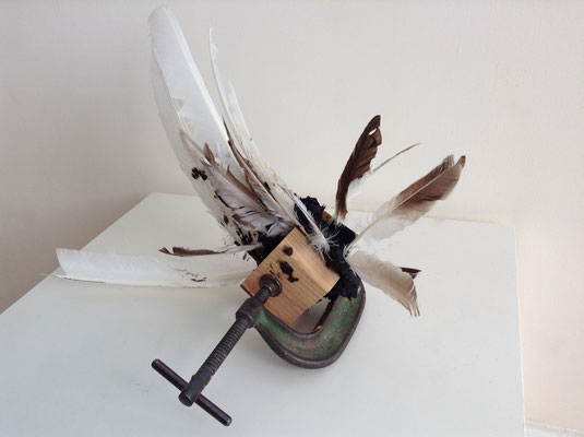 "The Peculiar Institution, Wood, Metal Clamp, Tar & Feathers, 16"" x 18"" x 12"""