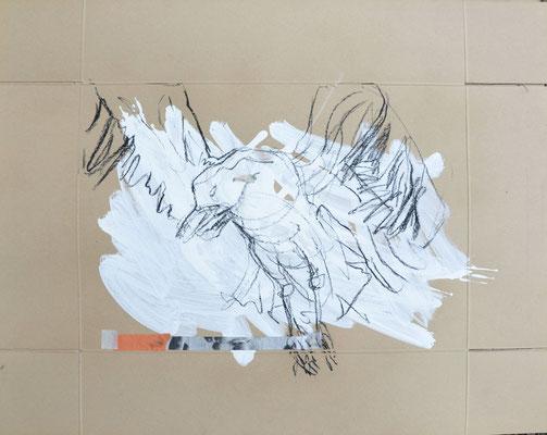 Pale Bird, Kohle und Acryl auf Karton, 67x85 cm, 2014
