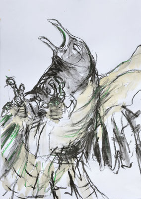Fighting Bird 07, Kohle und Acryl auf Papier, 42x29,7 cm, 2014