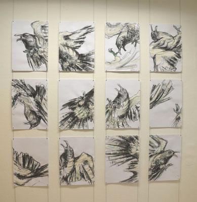 Fighting Birds, Kohle und Acryl auf Papier, je 42x29,7 cm, 2014