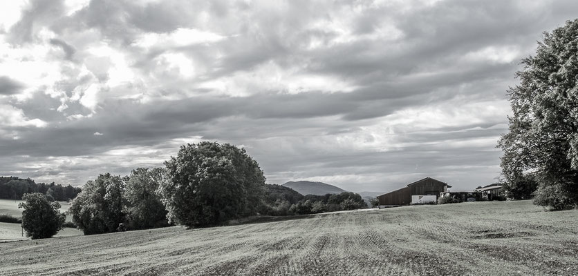 Herbstlandschaft 18 by Marcel Haag
