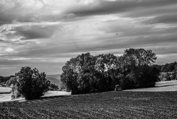 Herbstlandschaft 4 by Marcel Haag