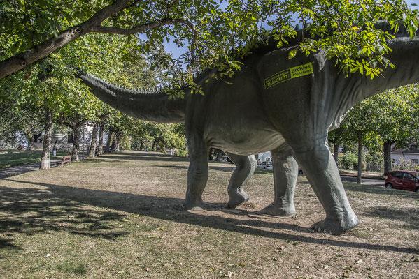 Dinosaur 1 by Marcel Haag