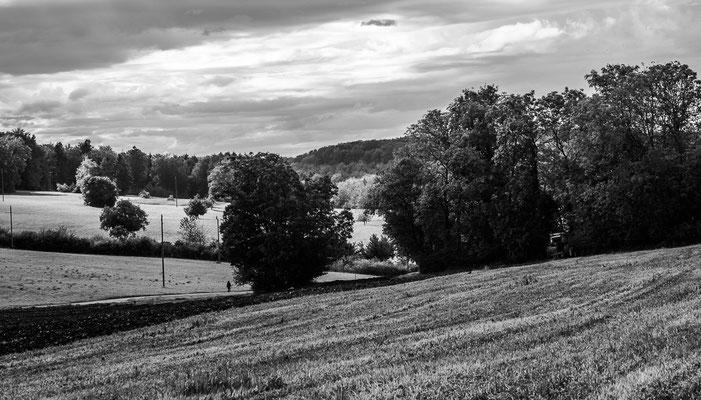 Herbstlandschaft 13 by Marcel Haag