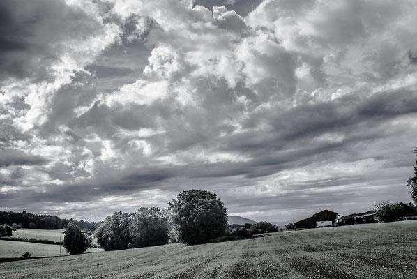 Herbstlandschaft 16 by Marcel Haag